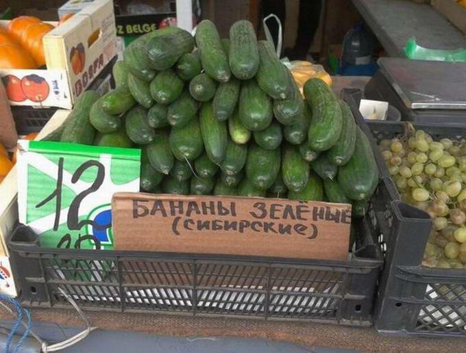 zeleni_sibirski_banani