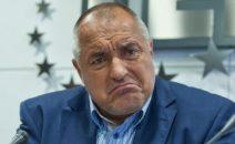 Борисов-гримаса